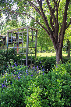 Carolyn Stagger Cokley - Herb Garden0981