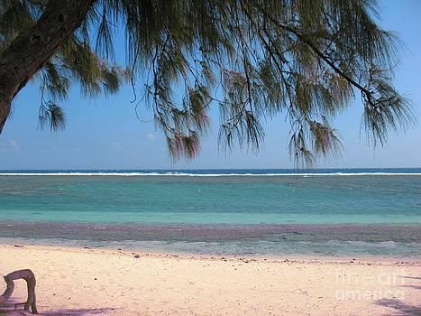 Hermitage - Ile De La Reunion - Reunion Island - Indian Ocean by Francoise Leandre