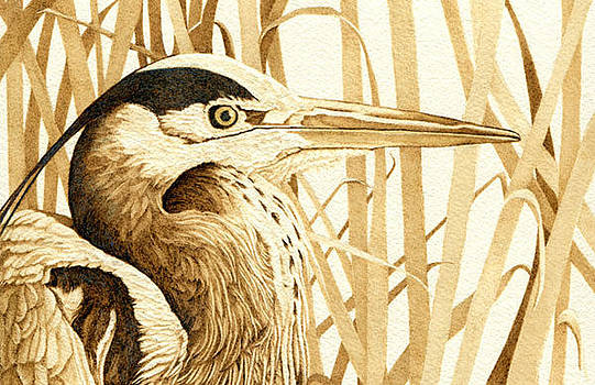 Heron in the Reeds by Cate McCauley