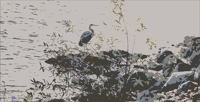 Silent Lake by Douglas MooreZart