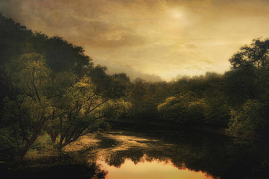 Hiawassee River at Dawn by William Schmid