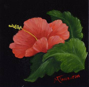 Hibiscus 3 by Marsha Thornton