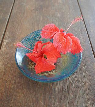 Hibiscus #4 by Chikako Hashimoto Lichnowsky