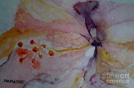 Hibiscus Dream by Barbra Joan