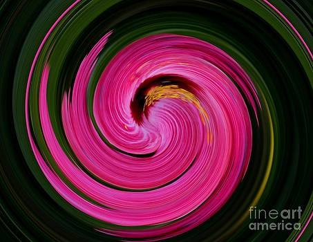 Hibiscus in Motion Series Part 3 by Imani  Morales