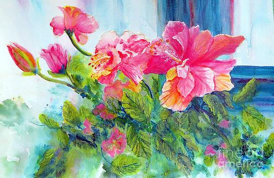 Hibiscus by June Haynes