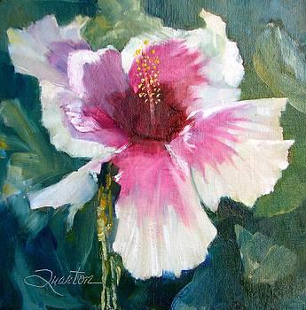 Hibiscus by Lori Quarton