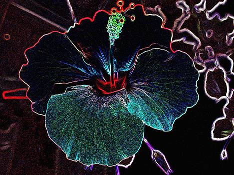Hibiscus Style by Sharon McLain