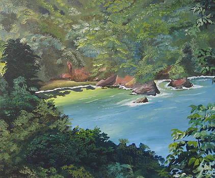 Hidden Bay by Samantha Rochard