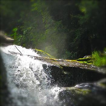 Hidden Falls by Paul Schoenig