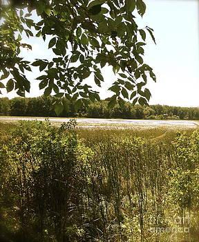 Hidden lake by Rob and Morgan Tuisku