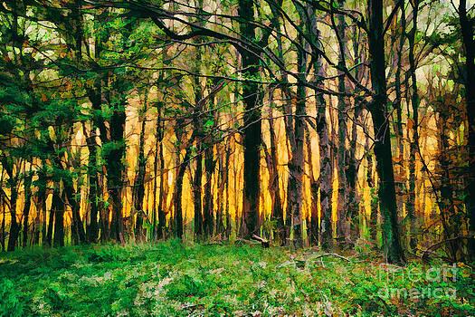 Dan Carmichael - Hidden Sunrise in the Blue Ridge