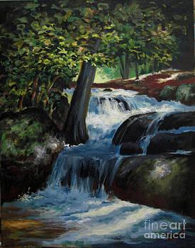 Hidden Waterfall 2 by Carol Hart