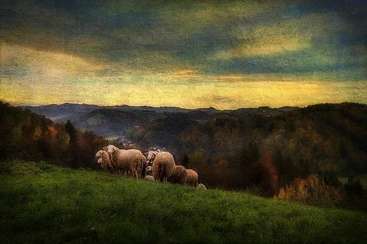 High Hill Pasture by Vjekoslav Antic