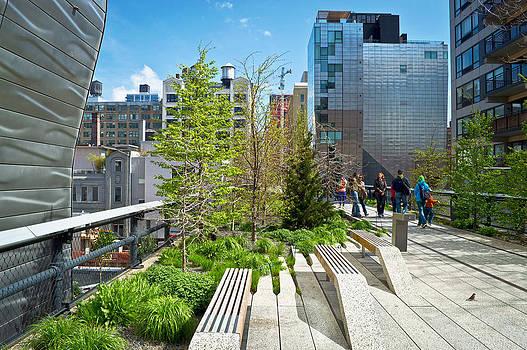 High Line Stroll by Andrew Kazmierski
