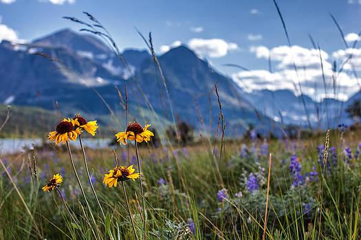 High Plains by Aaron Aldrich