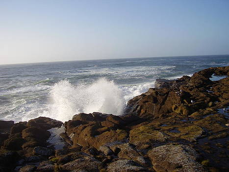 High Wave At The Oregon Coast by Yvette Pichette