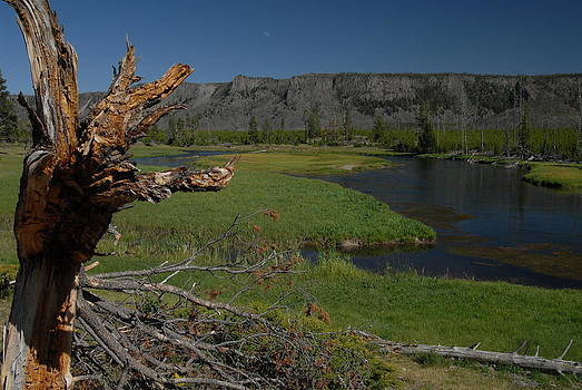 Hiking the Rivers of Yellowstone by Larry Moloney