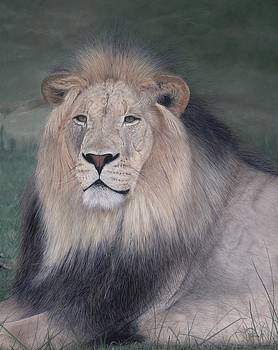 His Majesty by Pat Gilmore