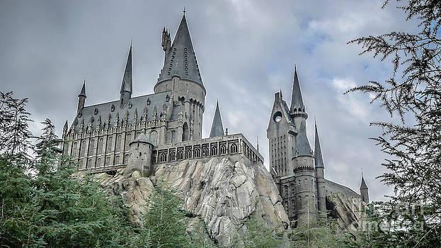 Edward Fielding - Hogswarts Castle
