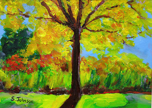 Holland Ponds Tree in Autumn by Suzanne Johnson