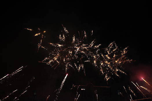 Hollydazzle by James Lawson
