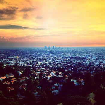 Hollywood Hills by Barry Shereshevsky