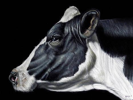 Holstein Friesian Dairy Cow  by Brent Schreiber