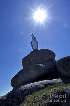 BERNARD JAUBERT - Holy Virgin