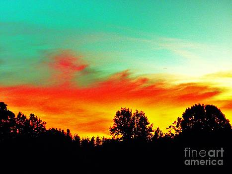 Home at dusk 2 by Robin Coaker