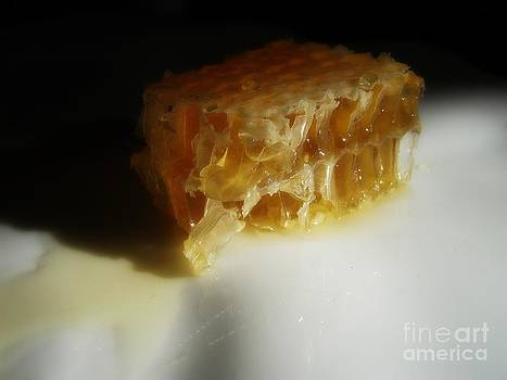 Honeycomb by Kristine Nora