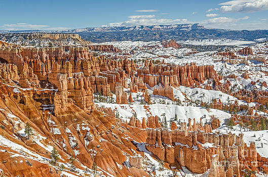 Hoodoos at Sunset Point by Sue Smith