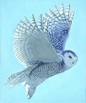 Hope Has Wings by - Harlan
