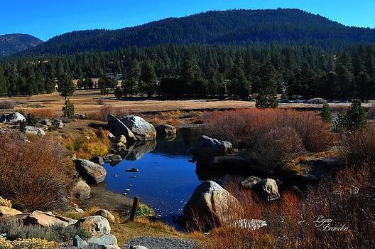 Lynn Bawden - Hope Valley