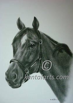 Horse 1 by Kuntal Chaudhuri