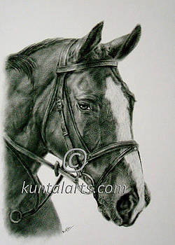 Horse 2 by Kuntal Chaudhuri
