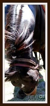 Gail Matthews - Horse Bowing to You