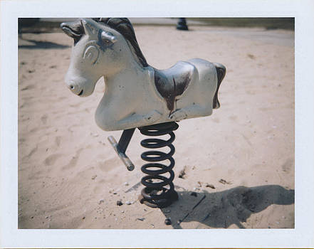 Horse by Brady D Hebert