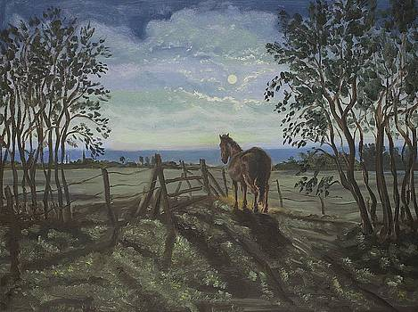Horse by moonlight by Andries Hartholt