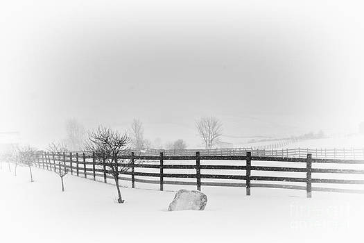 Horse Farm in Winter Storm  Canandaigua  2014 by Joseph Duba