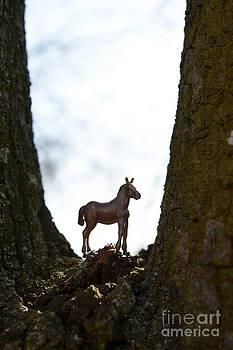 BERNARD JAUBERT - Horse figurine