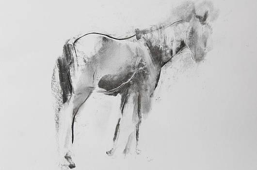 Janet Goddard - Horse