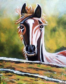 Horse by Jyoti Vats