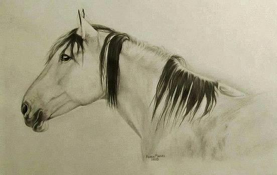 Horse by Karen E Marvel
