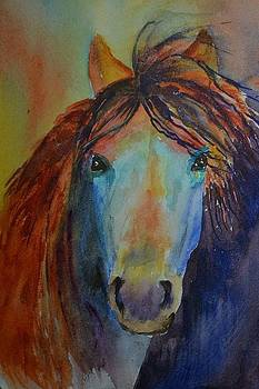 Horse of a Different Colour by Betty Mulligan