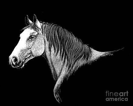 Horse Portrait by Jennifer Jeffris