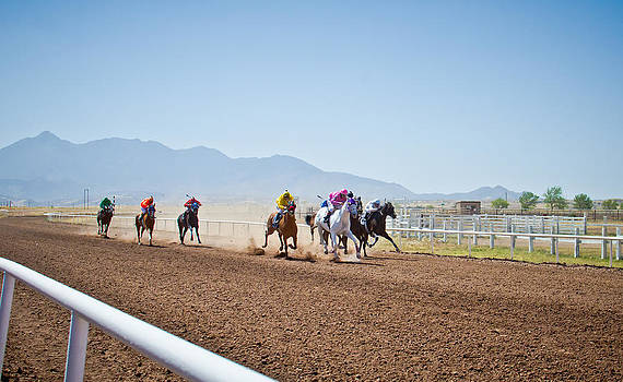 Horse Races by Swift Family