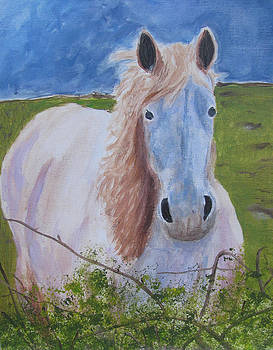 Horse with stormy skies by Dawn Dreibus