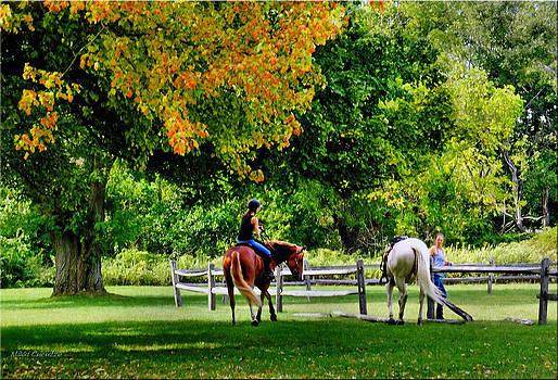 Horseback Riding by Mikki Cucuzzo