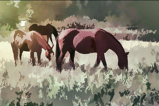 Horses by Diane Dugas